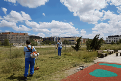 Mantenimiento jardinería centros del estado Burgos