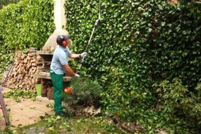 Trabajos de Jardinería en Burgos